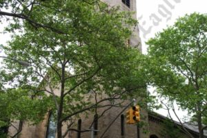 Our Lady of Lebanon Maronite Catholic Cathedral at 113 Remsen Street — Draft - Brooklyn Archive