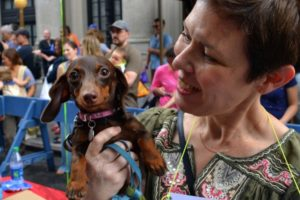 Precious petite pooch Delilah with owner Wendy Maline. - Brooklyn Archive