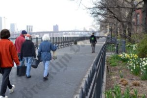 Promenade Garden Conservancy First Day 04/22/2014 - Brooklyn Archive