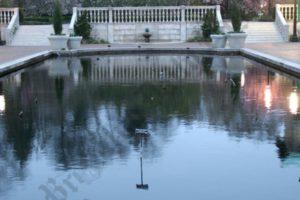 Brooklyn Botanic Garden 04/21/2009 - Brooklyn Archive