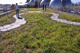 Greenpoint Community Environmental Fund Open House 10/15/2016