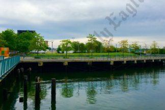 Red Hook Shoreline, May 2017