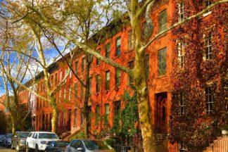 Boerum Hill, November 2017 - Brooklyn Archive